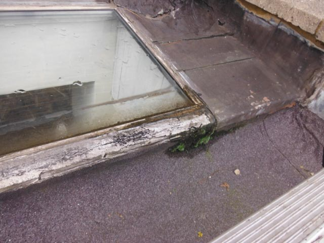 New Glass Skylight